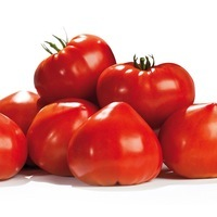 Production conventionnelle - TOMATE ALLONGEE type Coeur - PROSEM